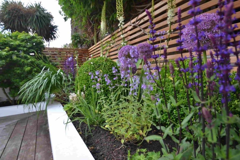 Floating Bench Living Colour Gardens