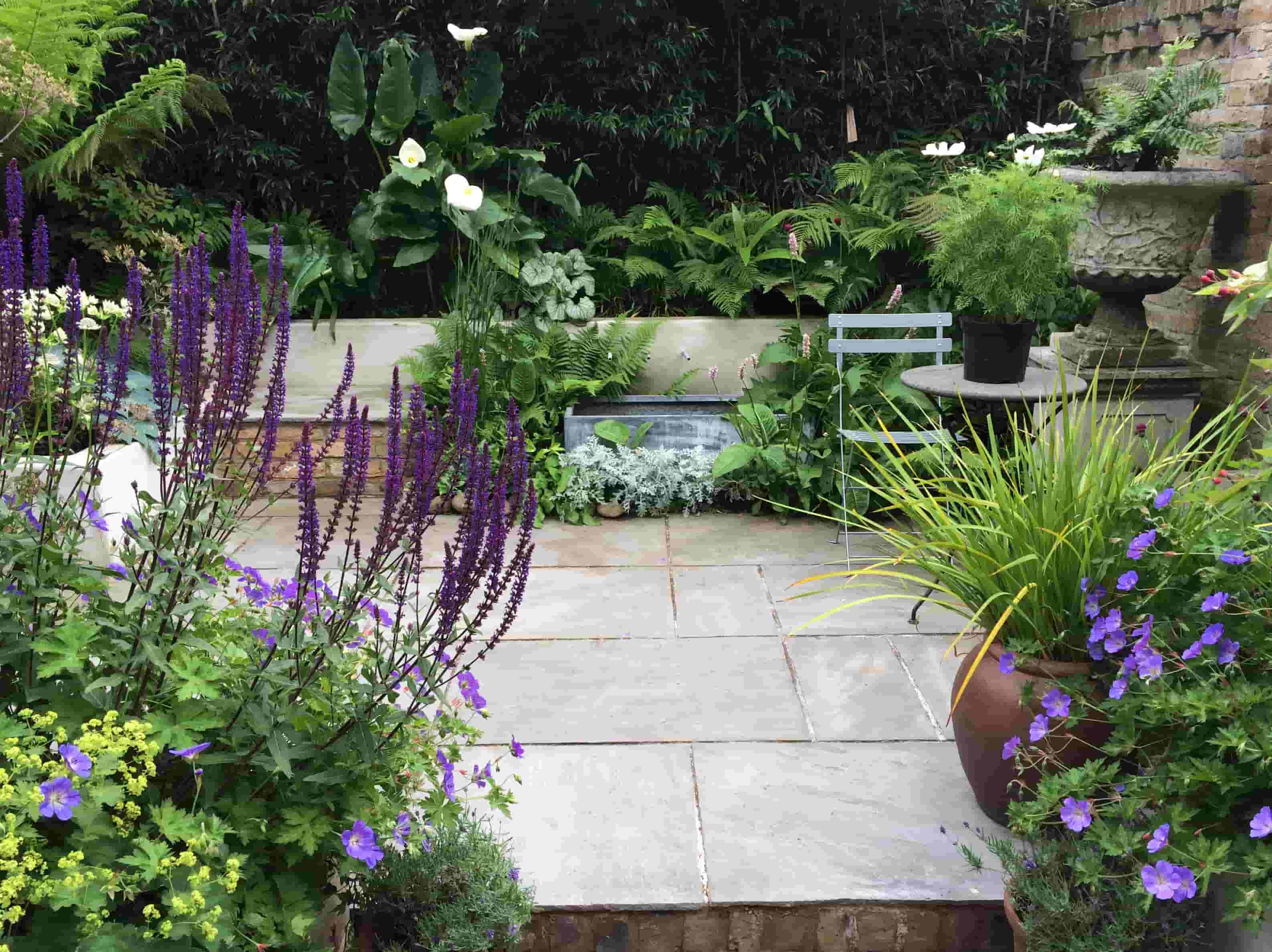 Living Colour Gardens